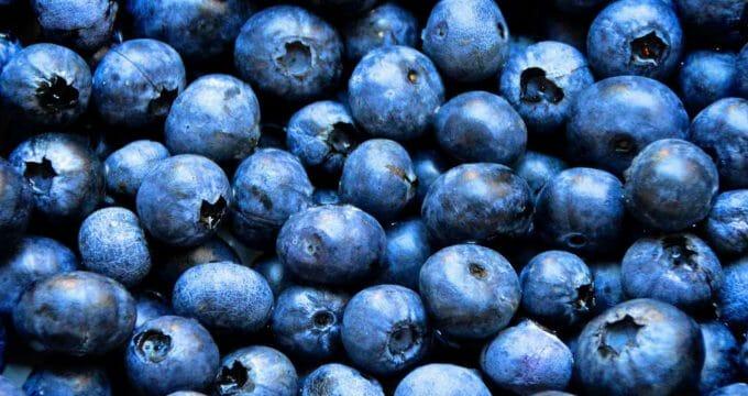 blueberries 1593965 1280
